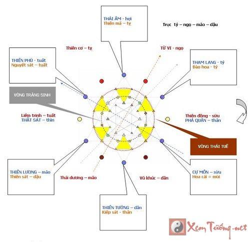 Thiên Cơ Thiên Lương đồng cung - lá số biến hóa khôn lường