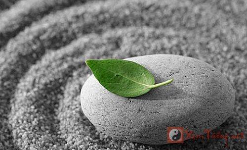 """Tìm hạnh phúc trong cái """"vô thường"""" của Phật giáo"""