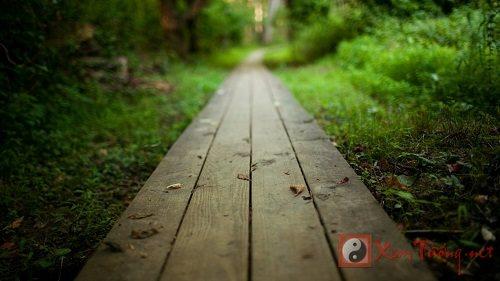 Mơ thấy con đường: Giải mã giấc mơ về con đường
