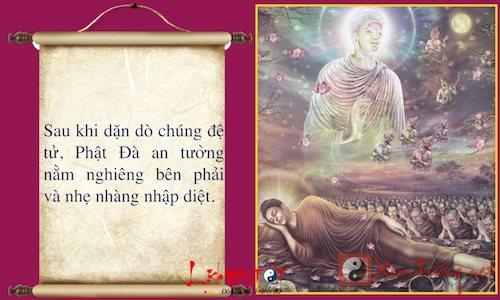 Infographic Cuoc doi Phat Thich Ca Mau Ni Phan 2 hinh anh goc 14
