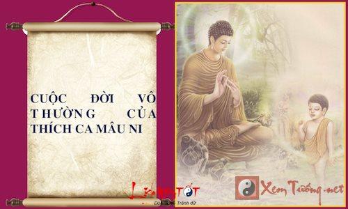 Infographic Cuoc doi Phat Thich Ca Mau Ni Phan 2 hinh anh goc 15