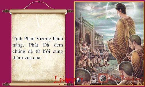 Infographic Cuoc doi Phat Thich Ca Mau Ni Phan 2 hinh anh goc 6