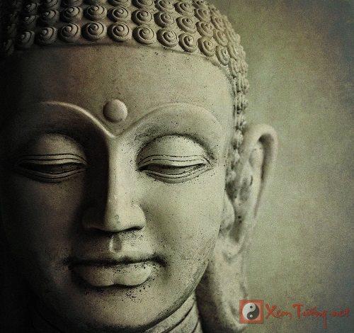 Quan điểm của Phật giáo về tình yêu thương đích thực