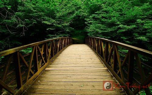 Ý nghĩa của cây cầu trong giấc mơ