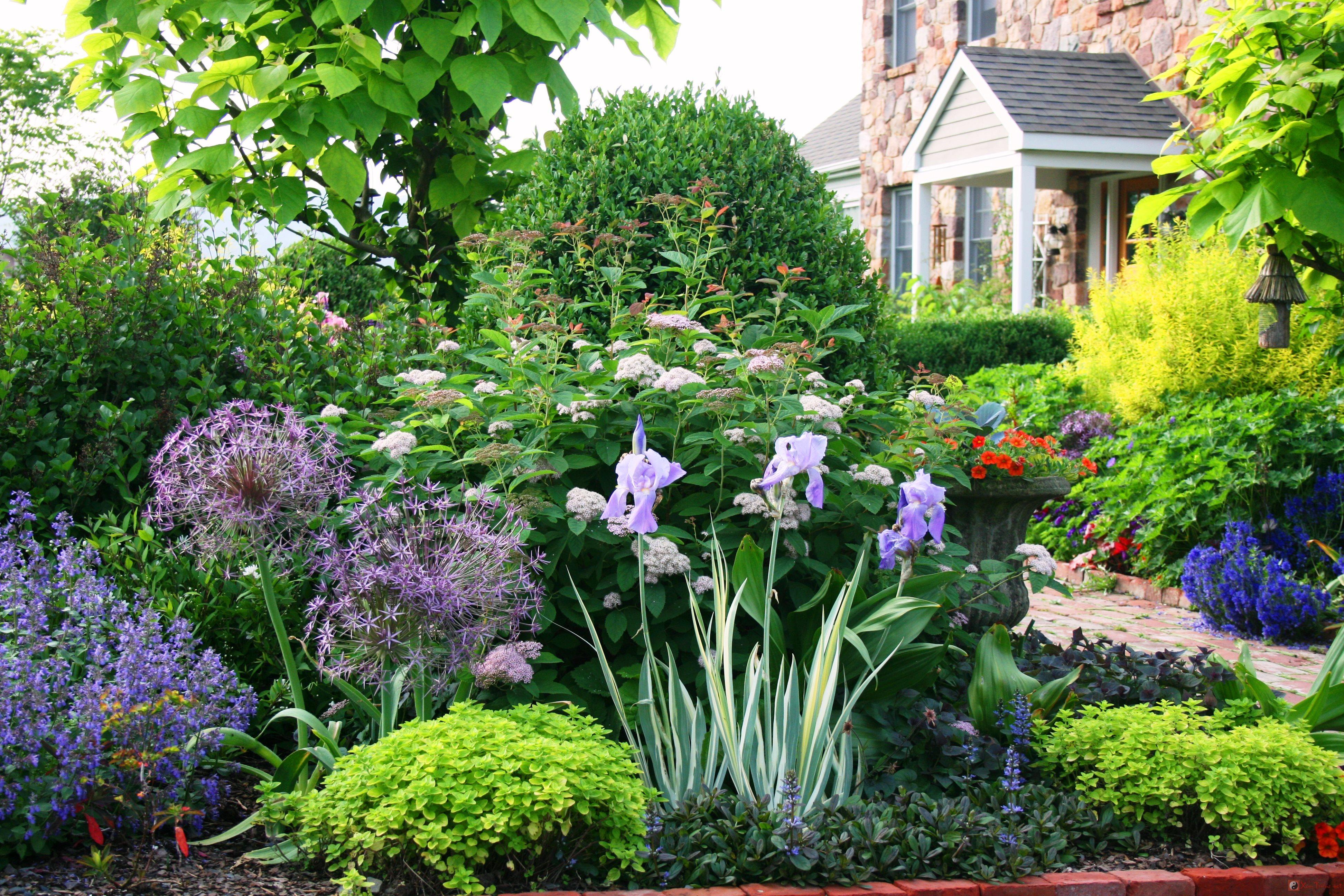 Thấy nhà vườn trong mơ là điềm báo gì?