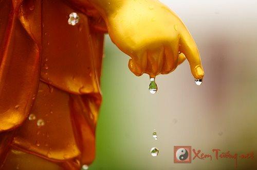 Ý nghĩa nghi thức tắm Phật trong tháng lễ Phật Đản sinh