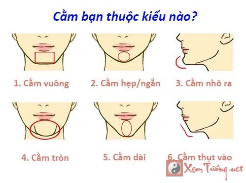 Trac nghiem Ban thuoc tuong cam nao duoi day hinh anh goc