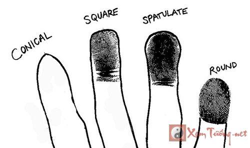 Tướng đầu ngón tay vuông hay tròn thì tốt?