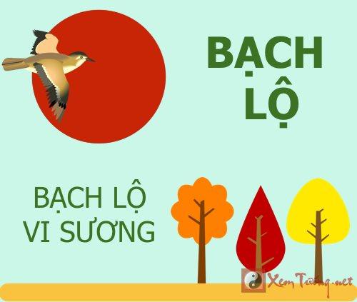 Tiet khi thu 15 Bach Lo vi suong, duong tam tu tinh hinh anh goc 2