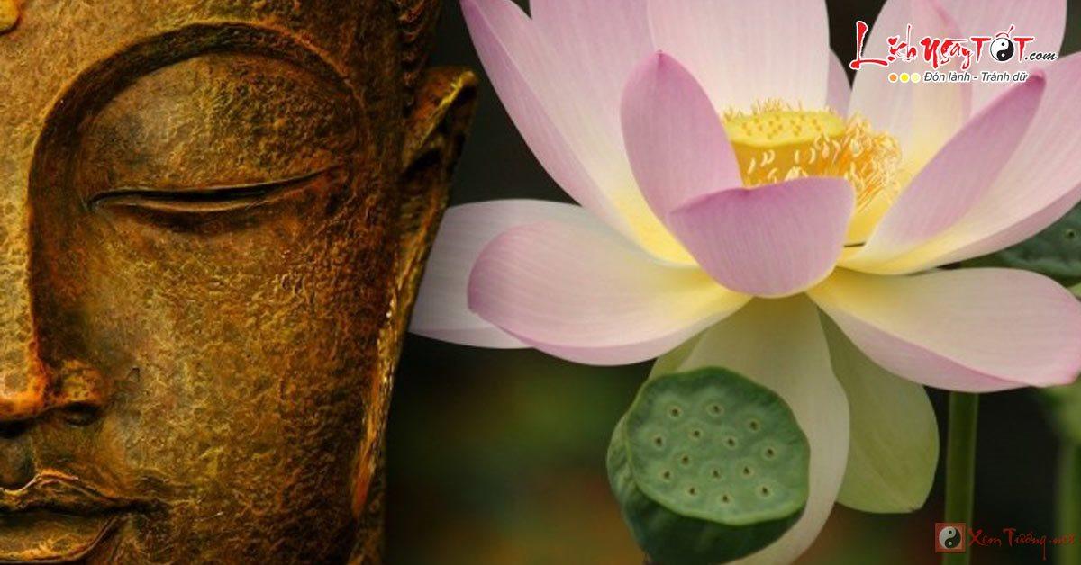 Ý nghĩa hoa sen trong Phật giáo, vì sao Phật ngồi trên hoa sen?