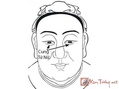 Cung Tu Nu trong 12 cung tuong mat hinh anh