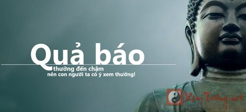 Loi Phat day ve nhan qua nhat dinh phai hieu moi ap dung dung hinh anh