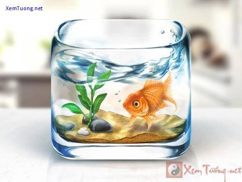 xem phuong vi de vuong su nghiep, danh tieng, hon nhan - 1