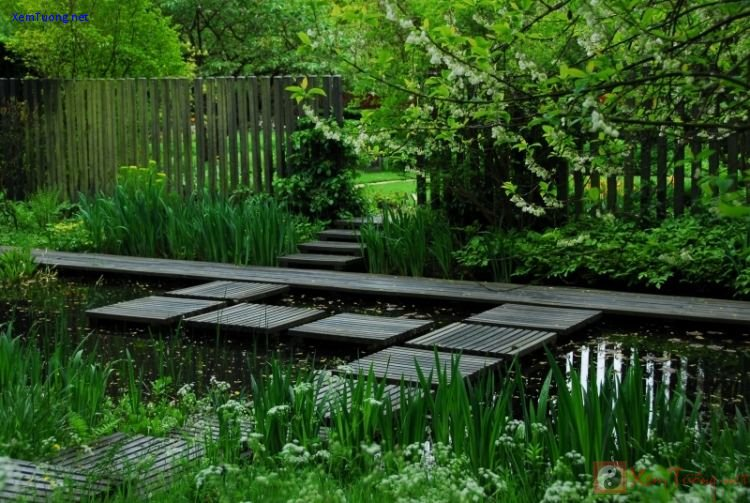 sân vườn bình yên