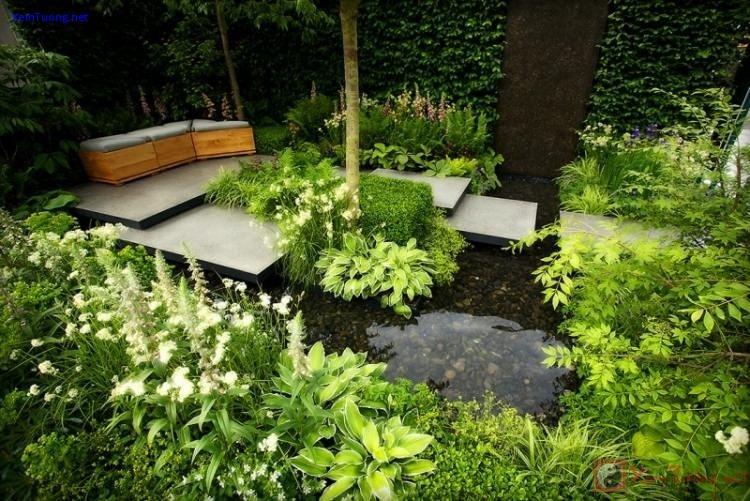 sân vườn tuyệt đẹp