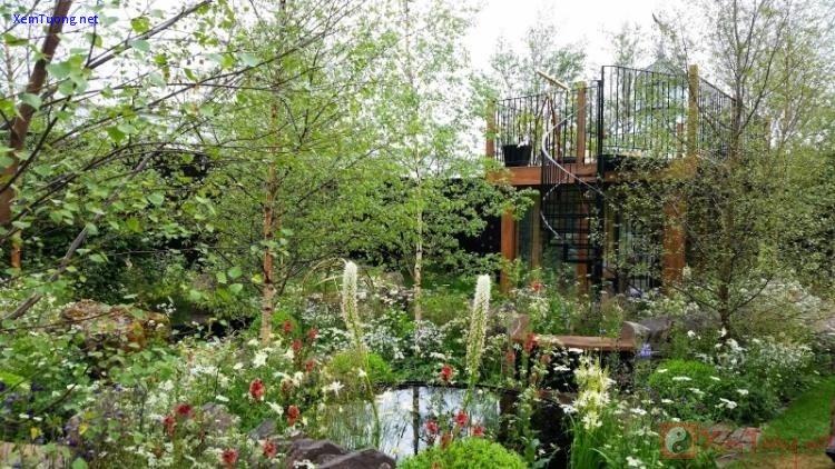 sân vườn đầy hoa