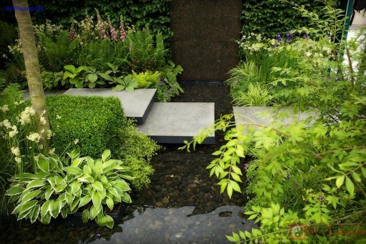 sân vườn nhỏ xinh