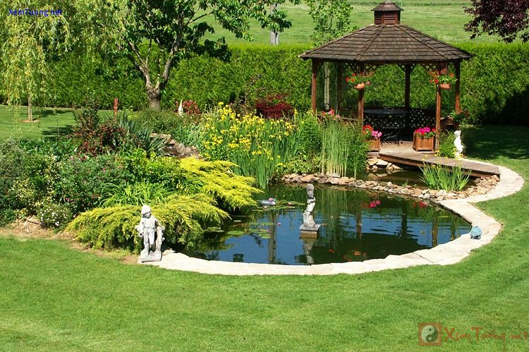 sân vườn có hồ nước