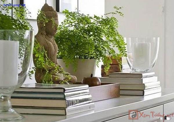 cần chú ý đến vị trí khi bài trí tượng đức phật trong nhà