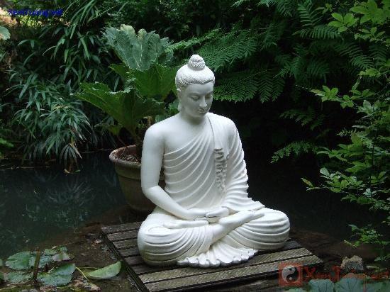 Vườn Thiền là khu vực lý tưởng để bài trí tượng Phật