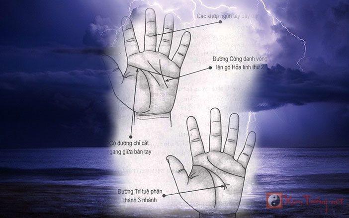 Xem bói, bàn tay người có chuyên môn cao
