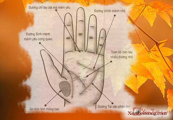 Xem chỉ tay, bàn tay thiếu sức khỏe