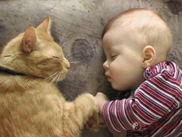 Những câu chúc ngủ ngon hay gửi tặng bạn bè