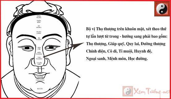 bi-vi-tho-thuong