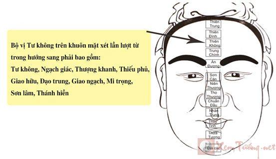 xem-tuong-tu-khong
