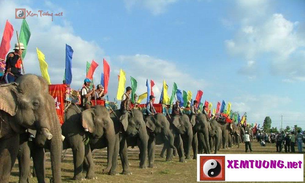 Lễ hội trong ngày 24 tháng 9 âm lịch - Hội Đua Voi Ở Tây Nguyên